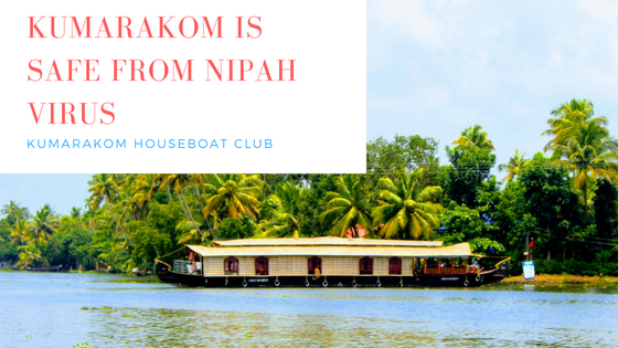 Nipah Virus – Is it safe to take a Houseboat at Kumarakom